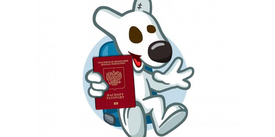 vk_passport