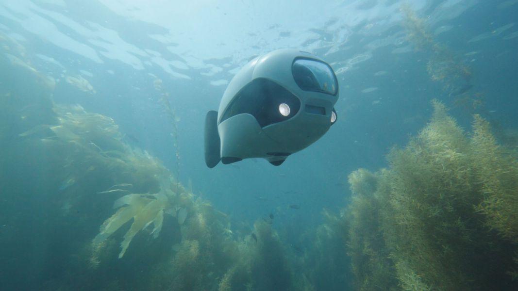 BIKI: первый бионический рыба-дрон