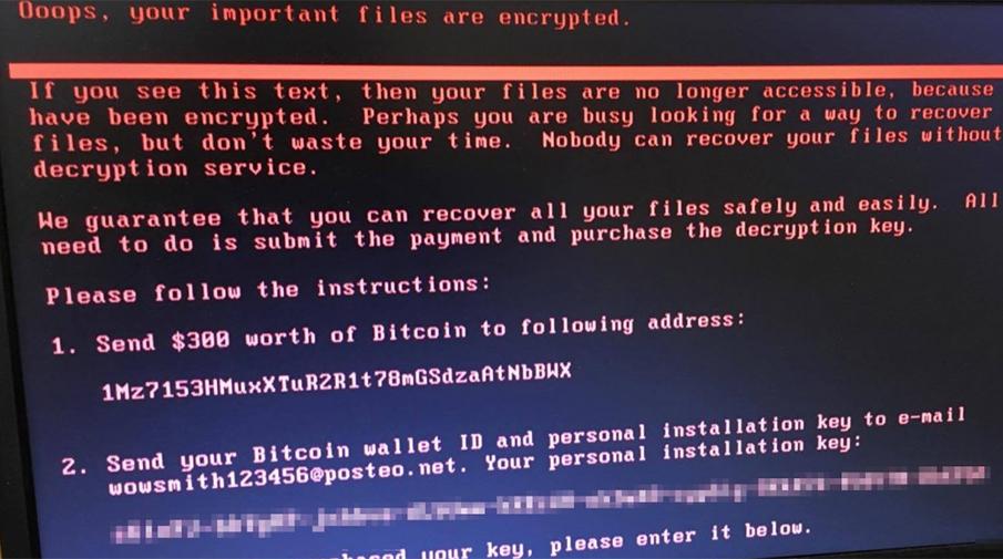 Вирус-вымогатель Petya принес хакерам всего $12 тыс.